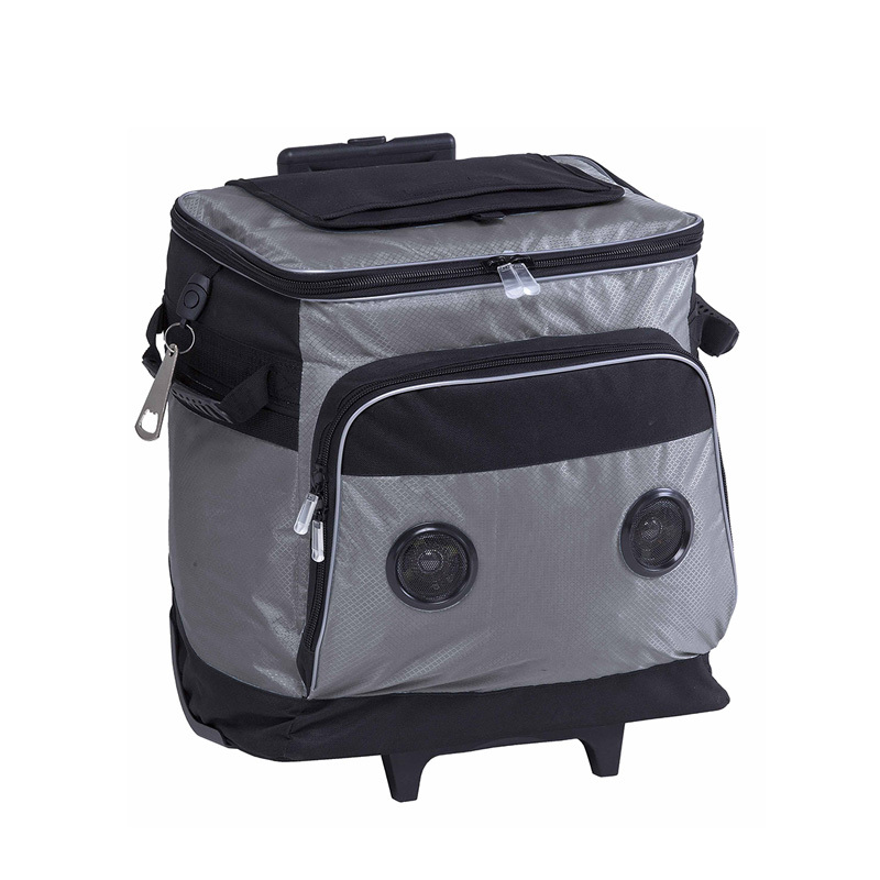 Trolley cooler bag with music player